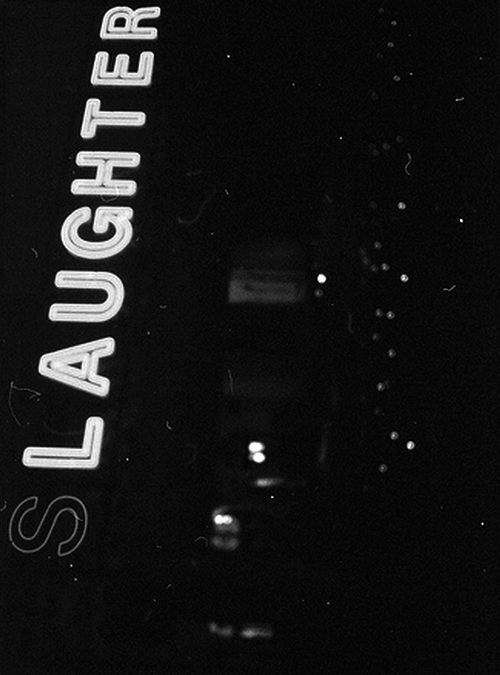 Slaughter/Laughter